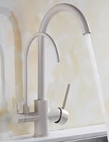 Недорогие -кухонный смеситель - Две ручки одно отверстие Стандартный Носик Современный Kitchen Taps