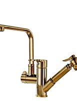 Недорогие -кухонный смеситель - Две ручки одно отверстие Матовый никель Стандартный Носик Обычные Kitchen Taps