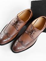 Недорогие -Муж. Официальная обувь Кожа Весна лето Мокасины и Свитер Для прогулок Ботинки Черный / Кофейный