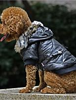 Недорогие -Собаки Плащи Одежда для собак Однотонный Пурпурный Зеленый Черный Терилен Костюм Назначение Корги Гончая Бульдог Осень Зима Женский На каждый день Наколенники