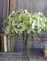 Недорогие -Искусственные Цветы 5 Филиал Классический европейский Простой стиль Орхидеи Вечные цветы Букеты на стол