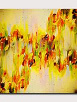 Недорогие -Hang-роспись маслом Ручная роспись - Абстракция Цветочные мотивы / ботанический Классика Modern Без внутренней части рамки