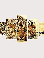Недорогие -С картинкой Роликовые холсты Отпечатки на холсте - Животные Коты Современный Modern 5 панелей