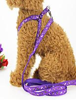 Недорогие -Собаки Коты Ремни Поводки Компактность Дышащий Жилет Геометрический принт Животное Терилен