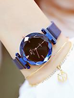 Недорогие -Жен. Наручные часы Японский Кварцевый Нержавеющая сталь Синий / Фиолетовый 30 m Новый дизайн Повседневные часы Аналоговый На каждый день Мода - Лиловый Синий Два года Срок службы батареи