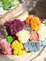 Недорогие -Искусственные Цветы 5 Филиал Классический Традиционный / классический Простой стиль Вечные цветы Суккулентные растения Букеты на стол