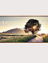 Недорогие -С картинкой Отпечатки на холсте - Пейзаж Модерн Modern
