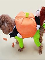 Недорогие -Собаки Костюмы Одежда для собак Персонажи Английский Оранжевый Синий Терилен Костюм Назначение Бишон Фриз шнауцер Пекинес Осень Зима Универсальные Вечеринка Косплей