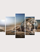 Недорогие -С картинкой Роликовые холсты Отпечатки на холсте - Животные Классика Современный Modern 5 панелей