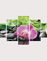 Недорогие -С картинкой Роликовые холсты Отпечатки на холсте - ботанический Цветочные мотивы / ботанический Современный Modern 5 панелей