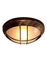Недорогие -Потолочные светильники Рассеянное освещение Окрашенные отделки Стекло 110-120Вольт / 220-240Вольт