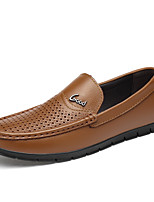 Недорогие -Муж. Официальная обувь Кожа Весна лето Деловые Мокасины и Свитер Дышащий Черный / Коричневый