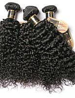 Недорогие -6 Связок Бразильские волосы Kinky Curly 100% Remy Hair Weave Bundles Человека ткет Волосы Удлинитель Пучок волос 8-28 дюймовый Естественный цвет Ткет человеческих волос Без запаха Мягкость Толстые