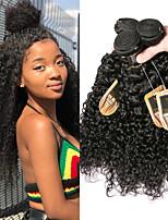 Недорогие -4 Связки Бразильские волосы Kinky Curly Не подвергавшиеся окрашиванию Человека ткет Волосы Пучок волос Накладки из натуральных волос 8-28 дюймовый Естественный цвет Ткет человеческих волос