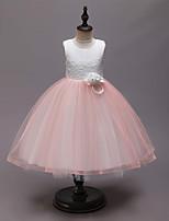 Недорогие -Дети Девочки Активный Милая Пэчворк Пэчворк Без рукавов До колена Платье Розовый