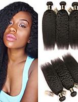 Недорогие -3 Связки Индийские волосы Естественные прямые Не подвергавшиеся окрашиванию Человека ткет Волосы Пучок волос One Pack Solution 8-28 дюймовый Естественный цвет Ткет человеческих волос / Без запаха