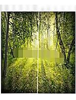 Недорогие -Украшение дома цифровая печать природный ландшафт высокое качество влагостойкие шторы гостиная полиэфирная ткань занавес