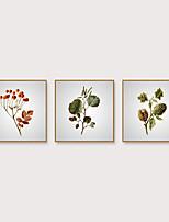 Недорогие -Отпечаток в раме Набор в раме - ботанический Цветочные мотивы / ботанический Полистирен Фотографии Предметы искусства
