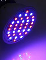 Недорогие -1шт 3 W 260-312 lm 36 Светодиодные бусины Растущие светильники Красный Синий 85-265 V Овощеводство