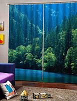Недорогие -Горячая внешняя торговля 3d цифровая печать затемнения оконные шторы роскошный род комплект штор для гостиной спальни готовые