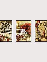 Недорогие -Отпечаток в раме Набор в раме - Пейзаж Цветочные мотивы / ботанический Полистирен Иллюстрации Предметы искусства