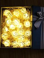 Недорогие -6м Гирлянды 40 светодиоды Тёплый белый / Розовый Для вечеринок / Декоративная / Свадьба Аккумуляторы AA 1 комплект