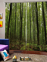 Недорогие -Китайский стиль природа вид занавес 3d печать утолщение солнцезащитный крем 100% полиэстер занавес гостиная и спальня ткань занавес