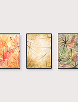 Недорогие -Отпечаток в раме Набор в раме - Натюрморт ботанический Полистирен Фотографии Предметы искусства
