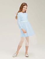 Недорогие -Дети Девочки Активный Однотонный Аппликация Длинный рукав До колена Платье Светло-синий