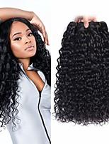 Недорогие -3 Связки Перуанские волосы Волнистые Не подвергавшиеся окрашиванию Необработанные натуральные волосы Wig Accessories Человека ткет Волосы Пучок волос 8-28 дюймовый Естественный цвет / Без запаха