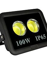 Недорогие -1шт 100 W LED прожекторы Водонепроницаемый / Декоративная Тёплый белый / Холодный белый 85-265 V Уличное освещение / Бассейн / двор 2 Светодиодные бусины