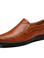 Недорогие -Муж. Кожаные ботинки Наппа Leather Весна лето Мокасины и Свитер Черный / Темно-русый / Темно-коричневый