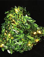 Недорогие -10 м Гибкие светодиодные ленты / Гирлянды 100 светодиоды Мощный светодиод Тёплый белый Творчество / Праздник / Новогоднее украшение для свадьбы Аккумуляторы AA 1шт / IP65