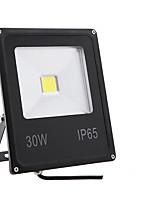 Недорогие -1шт 30 W LED прожекторы Водонепроницаемый / Декоративная Тёплый белый / Холодный белый 85-265 V Уличное освещение / Бассейн / двор 1 Светодиодные бусины