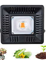Недорогие -1 комплект 30 W 300 lm 1 Светодиодные бусины Полного спектра Для парниковых гидропоники Растущие светильники 220 V 110 V Овощеводство