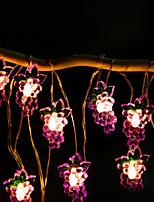 Недорогие -2 м виноградных плодов гирлянда 20 светодиодов теплый белый дом декоративные 5 В 1 компл.