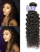 Недорогие -3 Связки Малазийские волосы Kinky Curly Не подвергавшиеся окрашиванию Необработанные натуральные волосы Человека ткет Волосы Удлинитель Пучок волос 8-28 дюймовый Нейтральный Ткет человеческих волос
