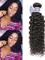 Недорогие -3 Связки Малазийские волосы Kinky Curly человеческие волосы Remy 100% Remy Hair Weave Bundles Человека ткет Волосы Удлинитель Пучок волос 8-28 дюймовый Естественный цвет Ткет человеческих волос
