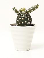 Недорогие -Искусственные Цветы 1 Филиал Классический Modern Суккулентные растения