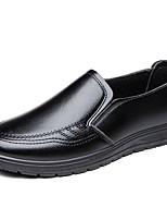 Недорогие -Муж. Официальная обувь Кожа Весна лето / Наступила зима На каждый день Мокасины и Свитер Черный / Темно-коричневый