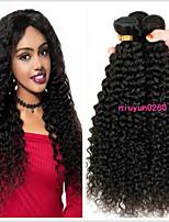Недорогие -3 Связки Бразильские волосы Kinky Curly Не подвергавшиеся окрашиванию 100% Remy Hair Weave Bundles Wig Accessories Головные уборы Человека ткет Волосы 8-28 дюймовый Естественный цвет / Без запаха