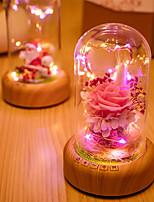 Недорогие -1шт Умный ночной свет Тёплый белый / Холодный белый USB Для детей / Мультипликация / С портом USB <5 V