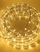 Недорогие -5 метров Гибкие светодиодные ленты 180 светодиоды ДИП светодиоды Тёплый белый / Белый / Красный Для вечеринок / Праздник / Самоклеющиеся 110 V 1 комплект