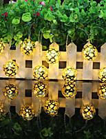 Недорогие -3 м золотой кованой гирлянды 20 светодиодов теплый белый / RGB / белый креатив / вечеринка / светодиодный рождественский фонарь / декоративные 5 В USB 1 комплект