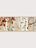 Недорогие -Отпечаток в раме Набор в раме - Пейзаж ботанический Полистирен Фотографии Предметы искусства