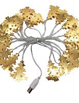 Недорогие -3 м золотые кованые елочные гирлянды 20 светодиодов теплый белый / RGB / белый креатив / вечеринка / светодиодный рождественский фонарь / декоративные 5 В USB 1 комплект