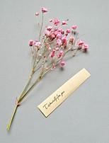 Недорогие -Искусственные Цветы 1 Филиал Классический Современный современный Перекати-поле Вечные цветы Букеты на стол