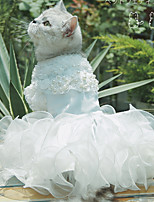 Недорогие -Собаки Коты Животные Платья Одежда для собак Кружева Белый Полиэстер Костюм Назначение Лето Мужской Свадьба