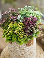 Недорогие -Искусственные Цветы 1 Филиал Классический Свадьба Свадебные цветы Вечные цветы Суккулентные растения Букеты на стол
