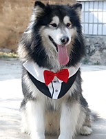 Недорогие -Собаки Костюм Одежда для собак Контрастных цветов Черный Синий Розовый Полиэстер Костюм Назначение Лето Свадьба Хэллоуин